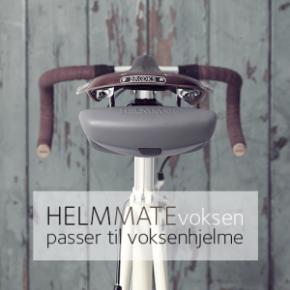 Helmmate