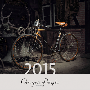 One year of bicycles