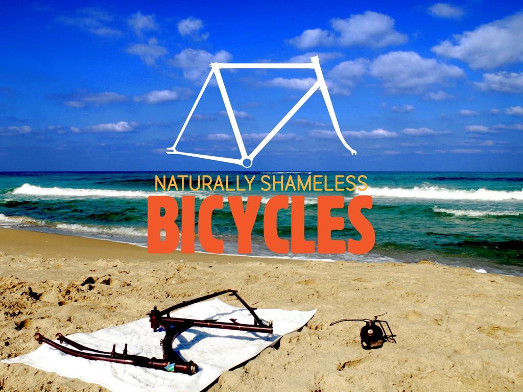 Naked Bicycle Calendar 1