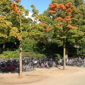 Fahrrad-Parkplatz am EMA