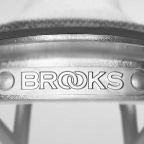 Brooks Cambium C17