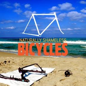 Naked Bicycle Calendar 2016