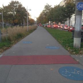 Ausbau des Radwegenetzes könnte 10.000 frühzeitige Todesfälle verhindern