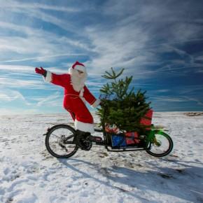 5 Tipps für den Weihnachtsbaum-Transport per Fahrrad
